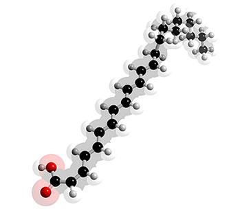 Picture of Docosahexaenoic acid