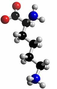 [HAY] Dinh dưỡng cho não bộ để có một bộ não khỏe mạnh 5